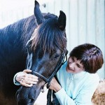 With Beau, a purebred Cheval Canadien whom I had for four years